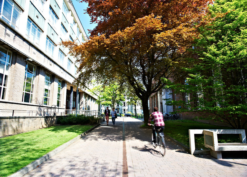 Net Zero Universities: Decarbonising heat on and off campus