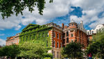 King's College London fully divests from fossil fuels image #1