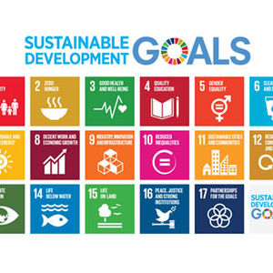 Engaging students on the SDGs