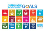 University of Winchester supporting local businesses to contribute to SDGs