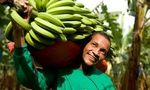 Scotland on course to be a Fairtrade nation