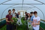 Growhampton, Roehampton Students' Union - a Finalist in the 2014 Green Gown Awards!