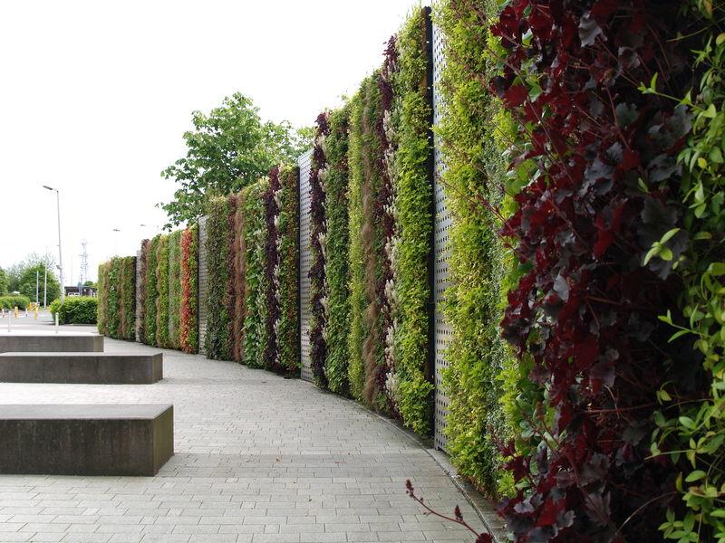 Green walls architettura vivente tra bellezza e valore - Giardino verticale madrid ...