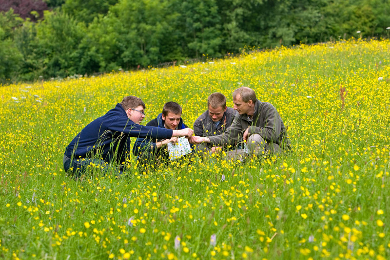 Students participating in an ecological survey (photograph by Nick Lockett/Ofsted)