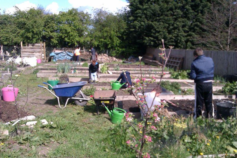 Community Garden � in action