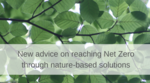 Net zero and nature-based intervention - new advice released image #1