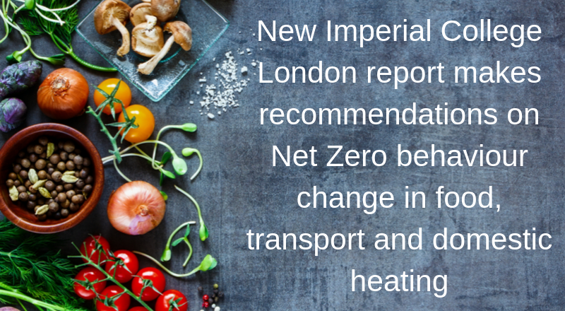 New report outlines behaviour change needed for Net Zero