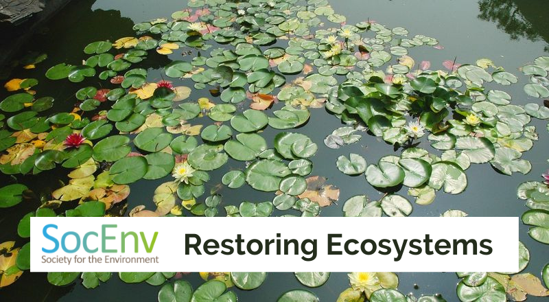 Join SocEnv Campaign to restore ecosystems