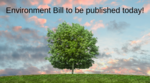 The Environment Bill - what are we looking for? image #1