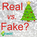 Real or Fake Christmas trees - what does the research say?