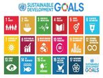 Are you doing any work around the SDGs? image #1