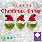 The perfect Christmas dinner - sustainability with all the trimmings!