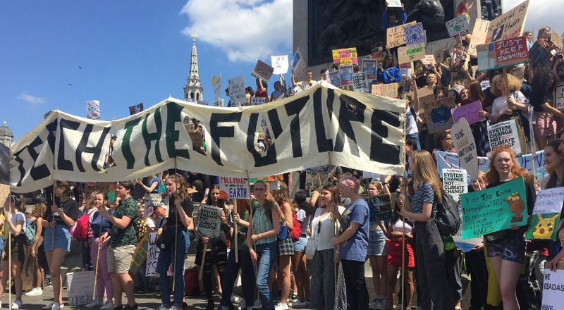 Nearly three quarters of teachers lack training on climate change